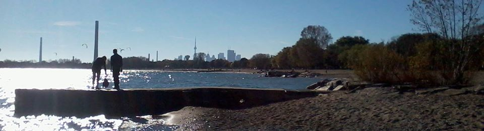 image of toronto waterfront